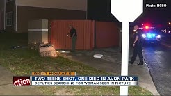 Two 16-year-old boys shot in Avon Park; one dead, one in critical condition