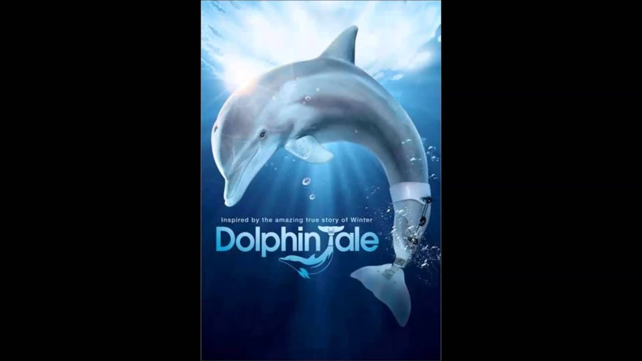 "Summer Movie: ""Dolphin Tale 2"" « Midwest Theater"