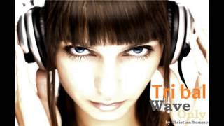 Tribal House Mix 2013 HD