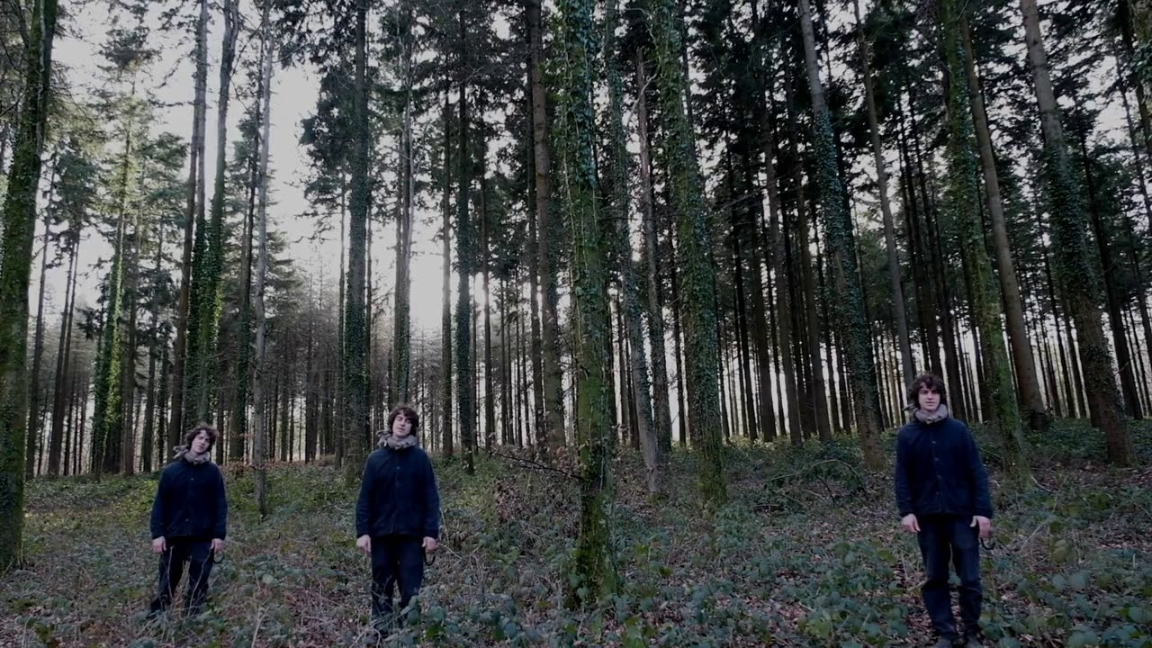 Cosmo Sheldrake - The Woods (live in the woods)