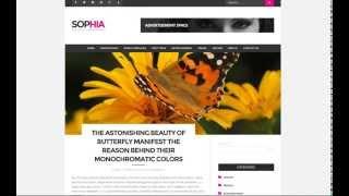 Sofia WordPress Theme Demo