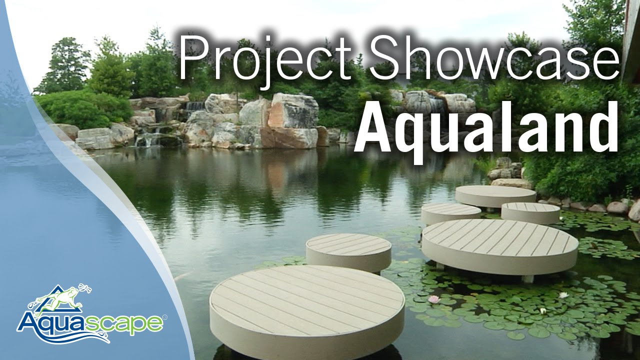 Merveilleux Aquascape Project Showcase   Aqualand   YouTube