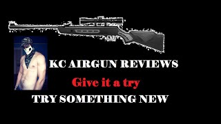 LATEST REVIEW: Hatsan Striker 1000s review