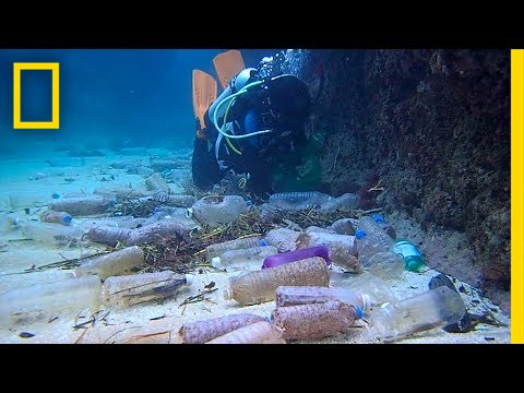 Thumbnail: Here's How Much Plastic Trash Is Littering the Earth | National Geographic