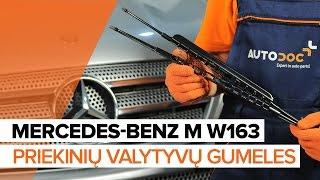Kaip pakeisti Priekinių valytyvų gumelės MERCEDES-BENZ M W163 [PAMOKA]
