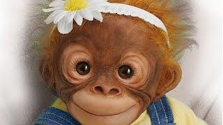 """Darling Daisy"" Lifelike Monkey Doll"
