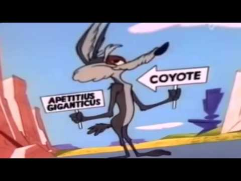 Coyote & RoadRunner 010 (ovidiu balteanu) Las Vegas Cartoons (漫画) ovidiu balteanu (ルイス暗号) ルイス暗号