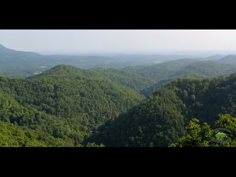 Why Stay in a Cabin in the Smoky Mountains on your next Vacation to Pigeon Forge & Gatlinburg.