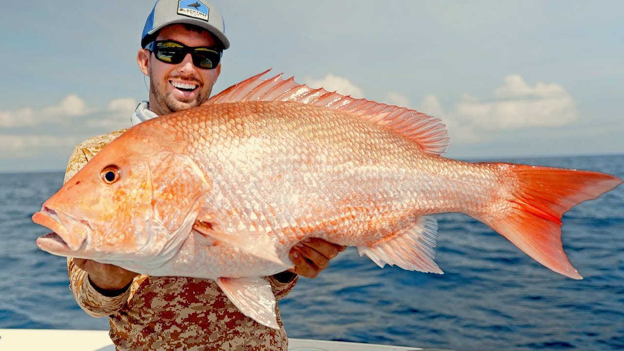 Opening Day of Red Snapper Fishing in Alabama