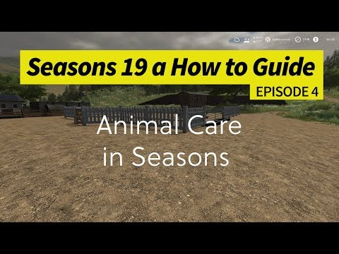 Seasons 19 - A How to Guide - Animal Care with Seasons
