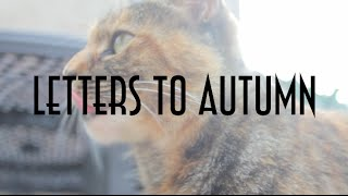 Letters To Autumn ||| 17 Thumbnail