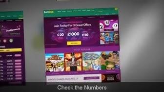 The Bet365 Bingo Application - Have fun on Gambling Time