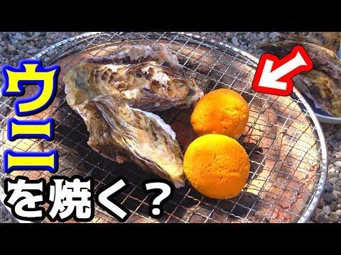 【七輪】貝殻にウニを乗っけた郷土料理!!