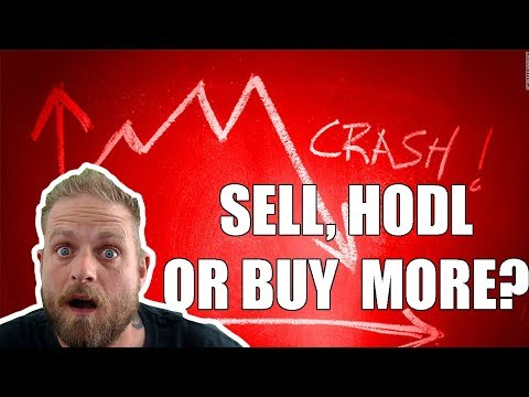 SELL? HODL? BUY MORE?