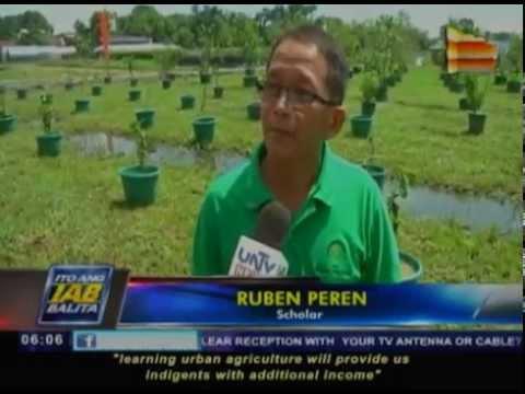 Urban farm school, binuksan sa Las Piñas