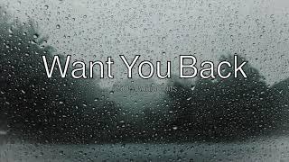 Want You Back - 5 Seconds Of Summer (Rain/Next Door Edit)