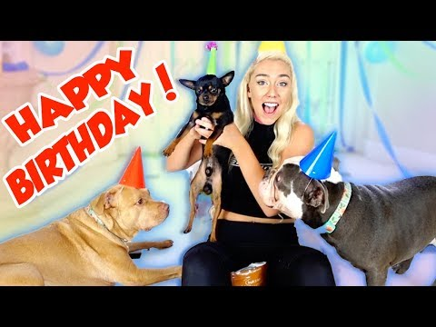 I THREW MY DOGS A BIRTHDAY PARTY! ITS A PAW TY