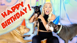 I THREW MY DOGS A BIRTHDAY PARTY! ITS A PAW TY | NICOLE SKYES