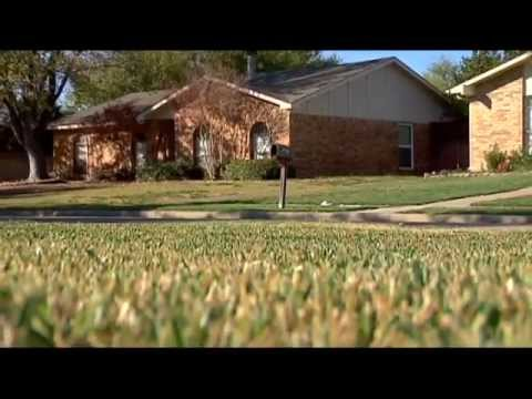 The Dirt Doctor on Lawns
