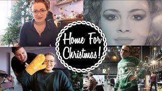 Home For Christma(saurus)!