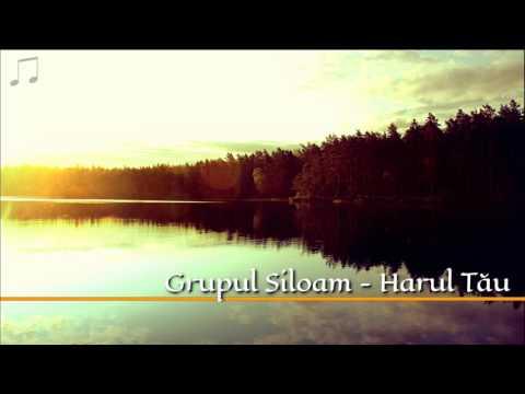 Grupul Siloam - Harul Tau