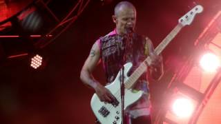 Download Video Pinkpop 2016 The Red Hot Chilli Peppers - Snow (Hey Oh) MP3 3GP MP4