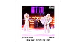 Baixar Lady Gaga ft  Christina Aguilera    Do What U Want Red Ant & Amp Lexvas Deep House Remix