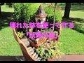 【衝撃】壊れた鉢を使って作る「妖精の庭」