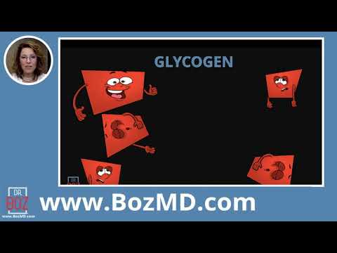 where-does-glucose-come-from-understanding-glycogen-with-dr-boz--dr.annette