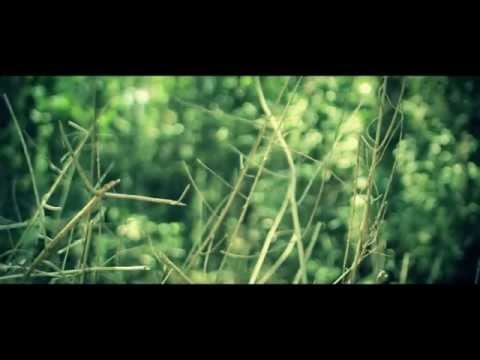 Short Art House film - Young and Free