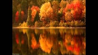 Осень, милая, шурши!