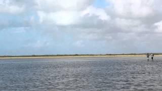 Fly fishing for ankle deep bone fish, so shallow it beach itself, Deadman