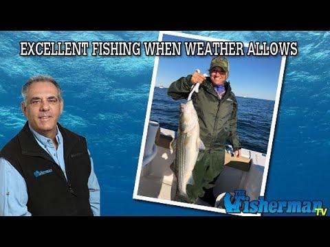 November 8, 2018 Long Island Metro Fishing Report With Fred Golofaro