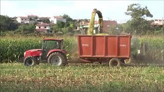 Silagem de milho 2018 em Sequeira, Braga! Irmãos Calheiros Mccormic...