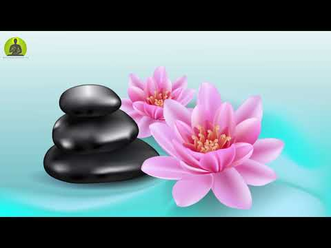 Healing Music for Removing Negative Energy l Relaxing Spa Music l Meditation Music Relax Mind Body