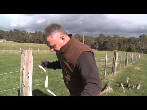 How to Build an O'Briens Electric Fence for sheep
