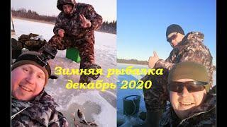 Зимняя рыбалка на озере Открытие сезона 2020 2021 Первый лёд Окунь на жерлицы и балансир