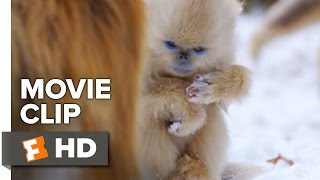 Born in China Movie Clip - Snow Cha-Cha (2017) | Movieclips Coming Soon