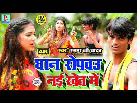 raman-ji-yadav-new-4k-video-song-2020-  -धान-रोपबउ-नई-खेत-में---dhan-ropabau-nai-khet-me,-4k-video