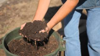 How to Prepare the Soil for Apple Trees : Fall & Winter Gardening Tips