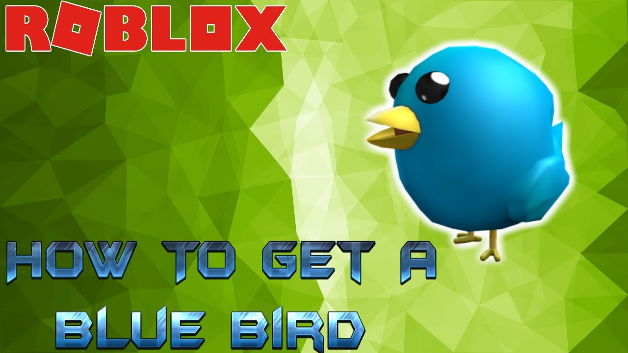How To Get A Blue Bird Pet In Roblox Youtube
