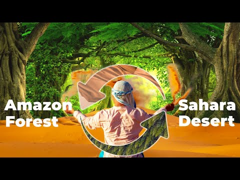 Why the Amazon Rainforest depends on the Sahara Desert For Survival