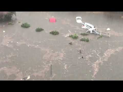 Il diluvio di Santa Rosalia