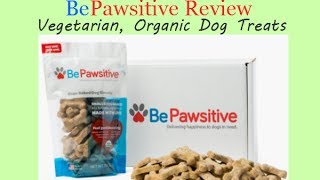 Bepawsitive Dog Treat Review: Vegetarian, Organic, Charitable...monthly Subscription Option