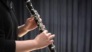 Louis spohr clarinet concerto no.2