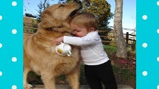 Best Videos of week Cute dog and baby ★ Dog loves baby