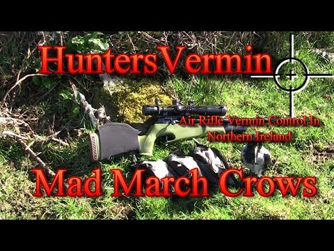 Air Rifle Hunting, Mad March Crows Mp3