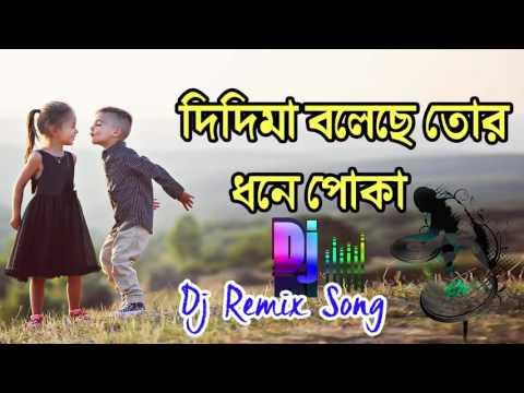 Purulia New DJ Songs 2017 - Didi MA Boleche Tor Dhone Poka | Bengali DJ Song
