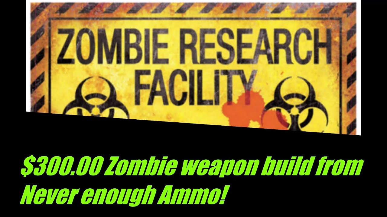 $300 dollar gun build for the zombie apocalypse part 1