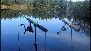Рыбалка на пруду в Августе. Ловля карася на Убийцу карася.
